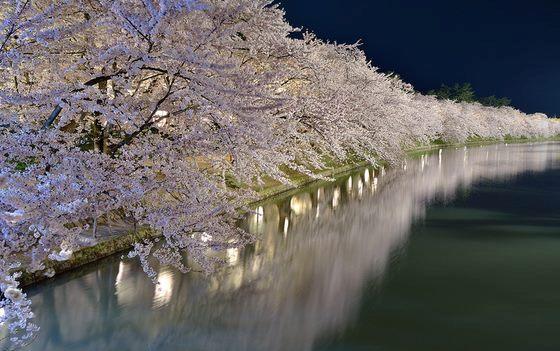 الربيع الساحر لمدينة أوموري بدولة