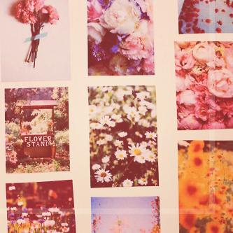 آلذكرىَ الجميلة