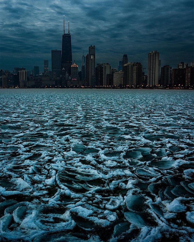 جنون شيكاغو