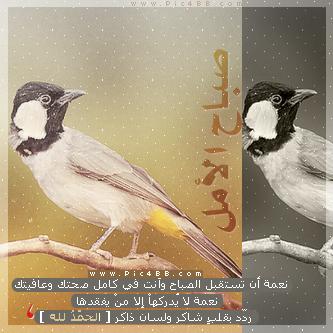 aforums.alllnews.com_storeimg_img_1398673198_303.jpg