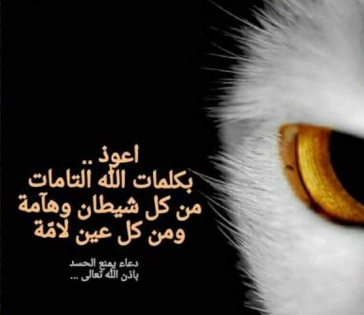 aup.graaam.com_forums_14777_01508076449.