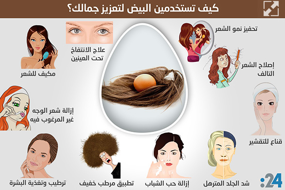 a24.ae_images_imgtemplates_naser_6_eggs.